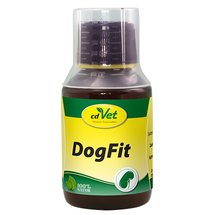 DogFit