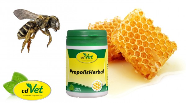 Propolis-Herbal-Honigbiene