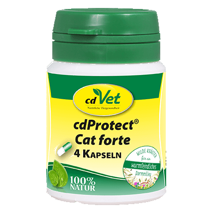 cdProtect Cat forte